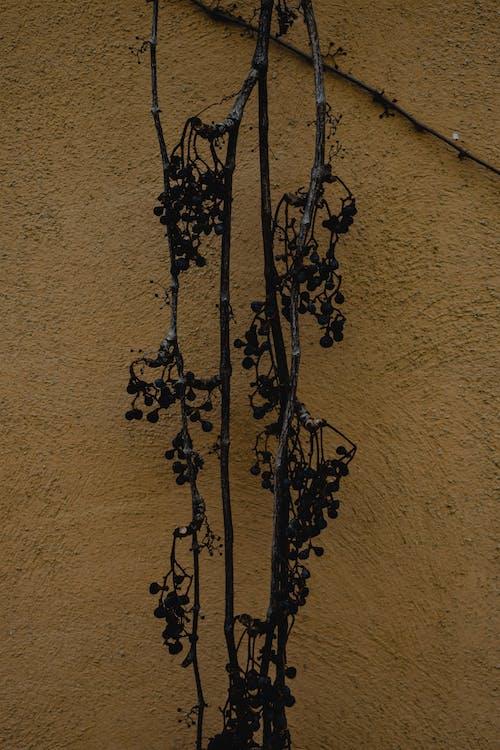 Black Metal Cross Wall Decor