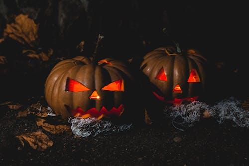 Immagine gratuita di buio, halloween, inquietante, lanterna