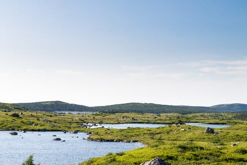 Picturesque landscape of lake with grassy coast
