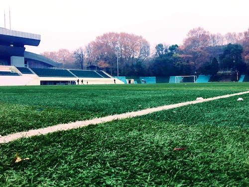 Free stock photo of campuslife, green, playground