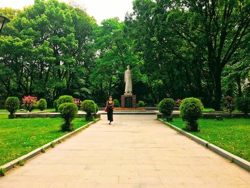 Free stock photo of campuslife, statue, universitystudentlife