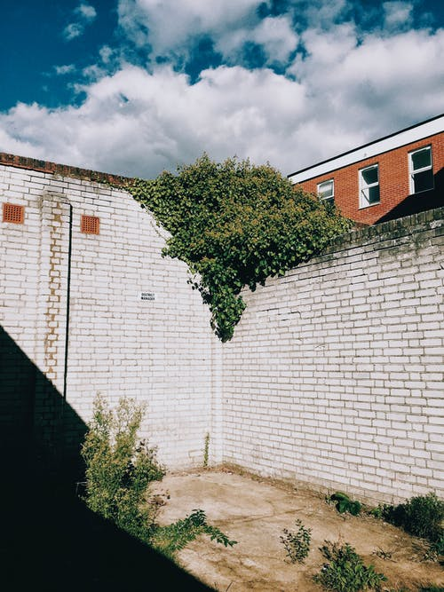 Old white brick walls near weathered floor with green plants near red building with windows under blue cloudy sky in city street in sunny summer day
