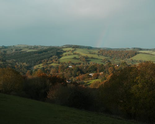 Valley with hills and fields near trees and houses