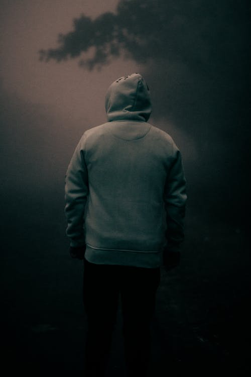 Back view of anonymous male in warm hoodie standing alone in misty forest near trees under gloomy sky