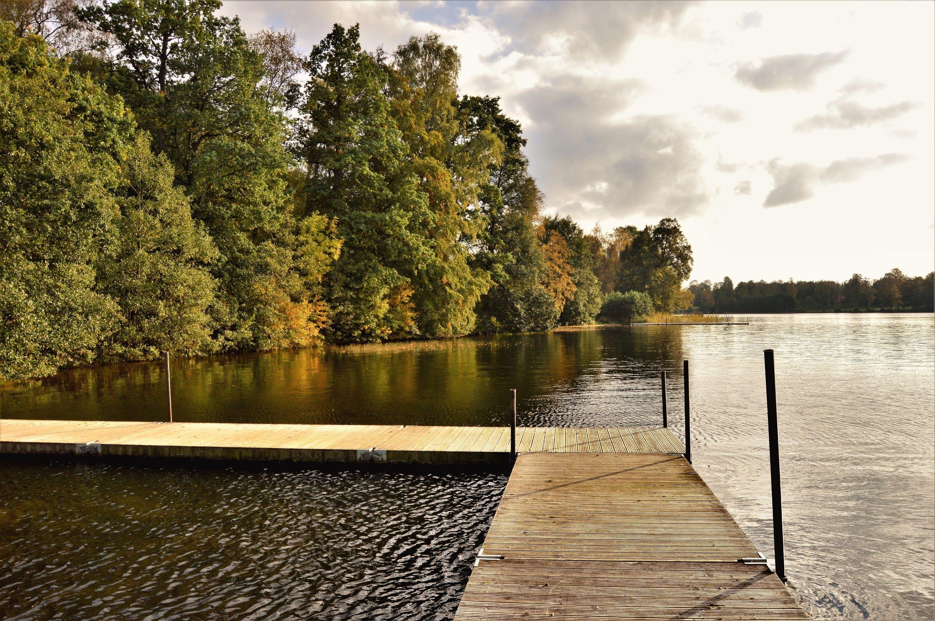 Free stock photo of autumn, bridge, clouds, fall