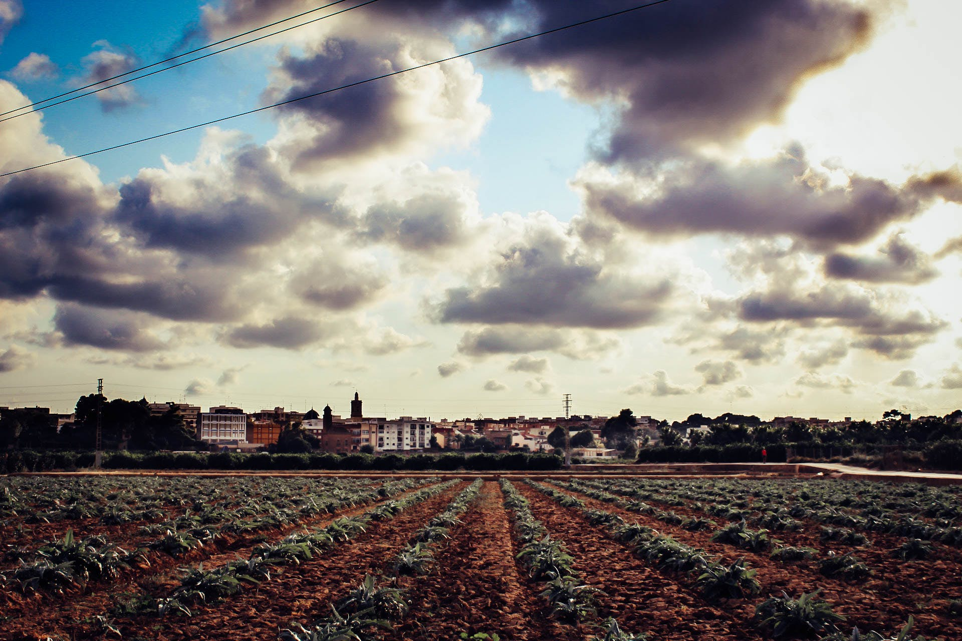 agriculture, buildings, cielo