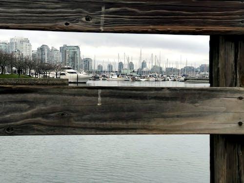 Free stock photo of boats, canada, coast
