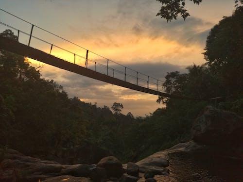 傍晚的天空, 傍晚的太陽, 天性, 橋 的 免費圖庫相片