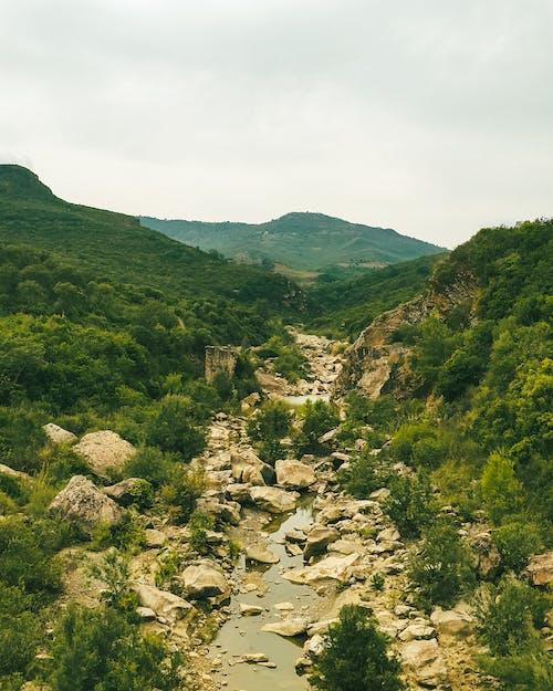 Gratis stockfoto met cascade, fabrieken, heuvels