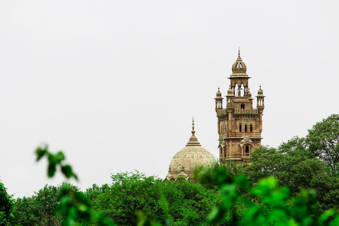 kivi, kupoli, laxmi vilas palace
