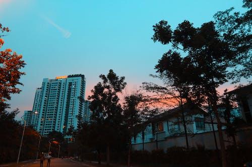 建築師, 日落 的 免費圖庫相片