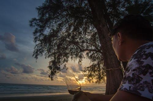 Free stock photo of beach, chill, red wine