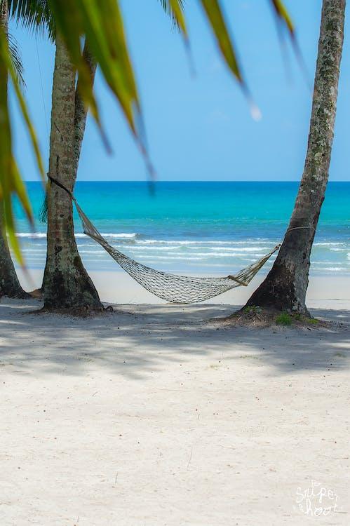 Free stock photo of beach, hammocks, sea