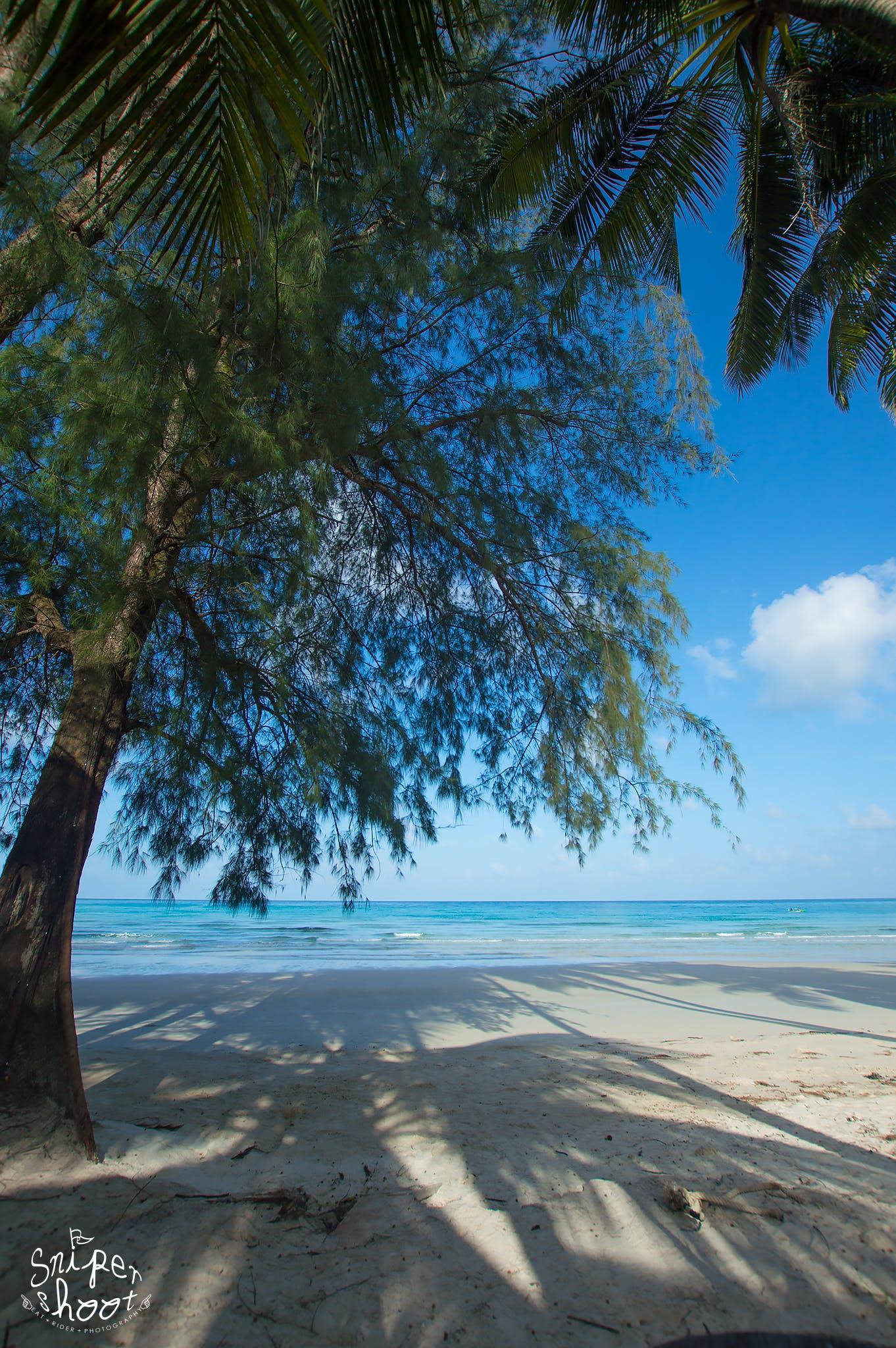 Kostenloses Stock Foto zu meer, strand