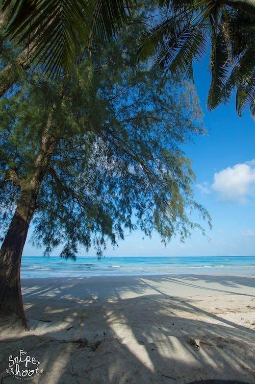 Darmowe zdjęcie z galerii z morze, plaża