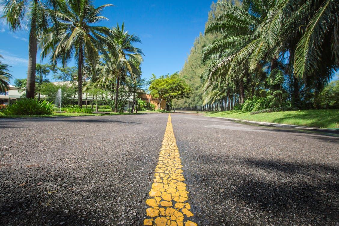 Free stock photo of road, roadway, street