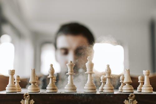 Základová fotografie zdarma na téma desková hra, herní plán, inteligence, kámoš