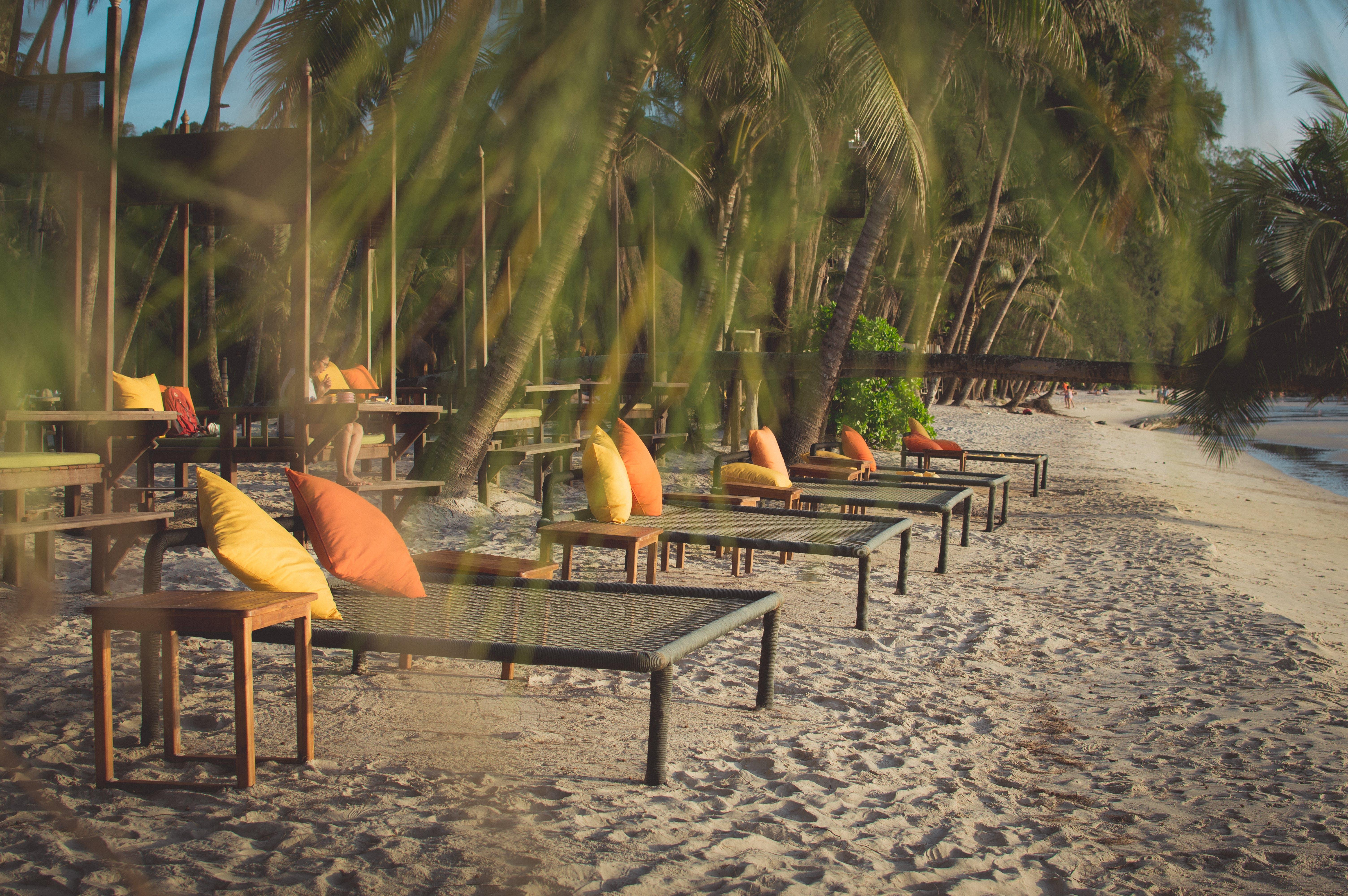 Kostenloses Stock Foto zu kokosnussbaum, meer, sonnenuntergang, strand