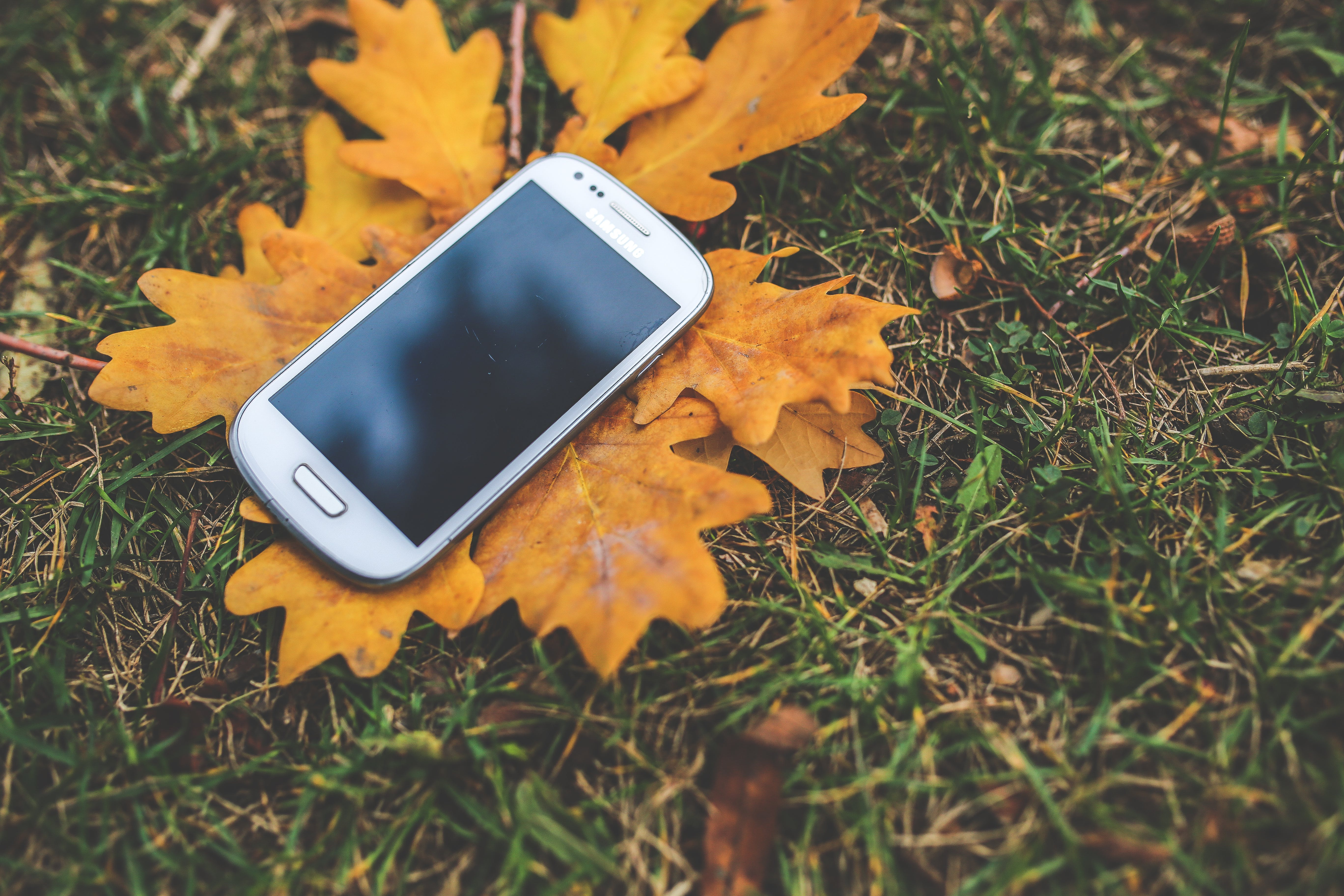 White mobile on the autumn leaves