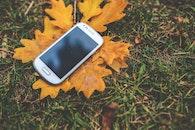 smartphone, technology, mockup