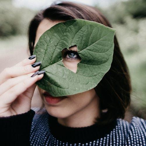 Femme En Pull En Tricot Bleu Tenant Une Feuille Verte