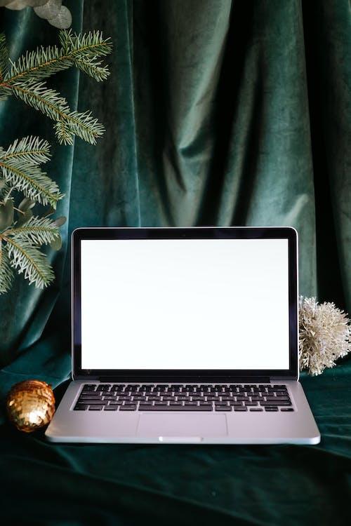 Macbook Pro on Green Leaves