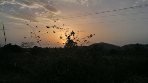 晚間, 景觀, 背光 的 免费素材照片