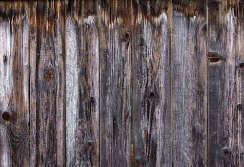 Безкоштовне стокове фото на тему «брудний, грубий, двері»
