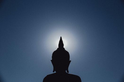 Free stock photo of sky, blue, sun, silhouette