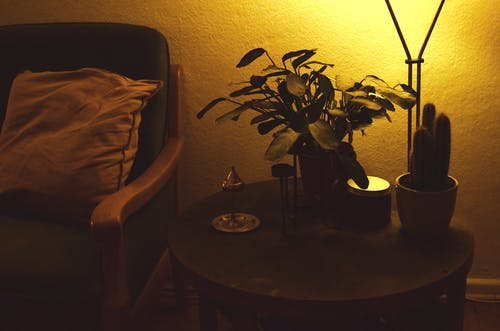 Bright lamp and potted green plants on small wooden round table near couch with pillow in dark room