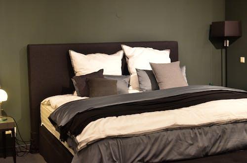 Fotos de stock gratuitas de adentro, almohada, amortiguar