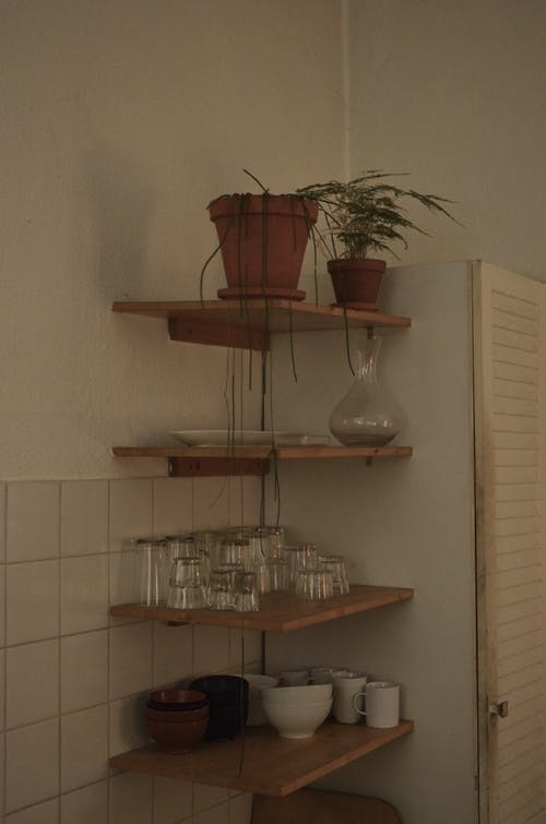 Potted plants with verdant leaves composed on timber shelves with glassware and plates with bowls in kitchen