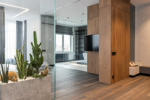 Glass box with tropical plants in modern studio
