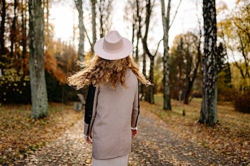 Бесплатное стоковое фото с вид сзади, деревья, дорожка