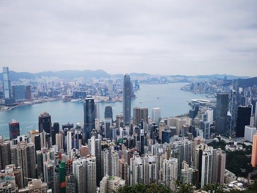 Free stock photo of harbour, hong kong, the peak