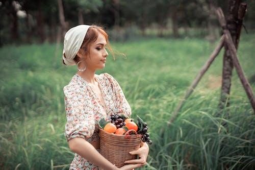 Darmowe zdjęcie z galerii z agronomia, apple, botanika