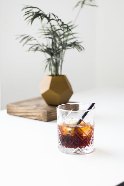 Glass of cocktail served on table near lush potted plant
