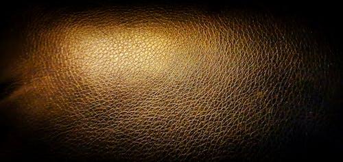 Free stock photo of leather, leather sofa, piel