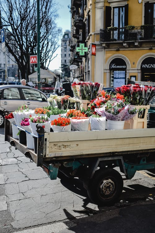 White and Pink Flowers on Green Utility Trailer