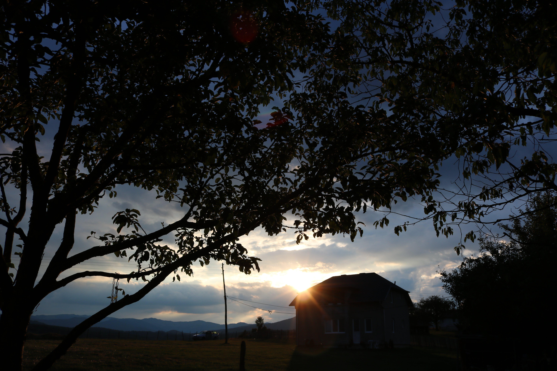 Free stock photo of blue, dark, evening, evening sun