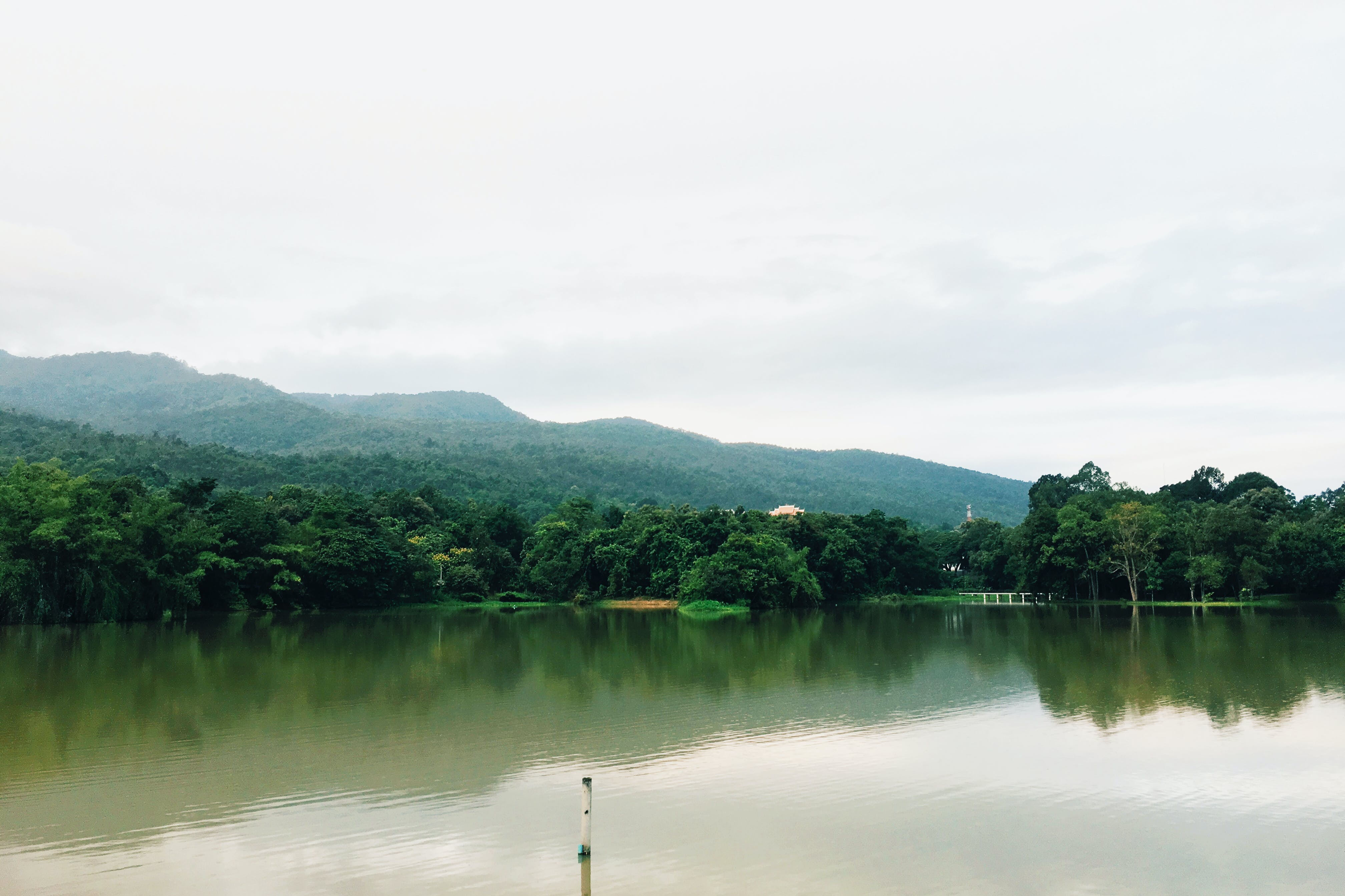 Lake Near Trees Under Cloudy Sky