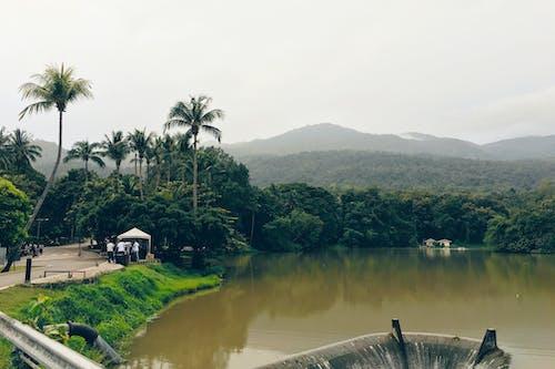 Fotos de stock gratuitas de agua, con niebla, escénico, montaña