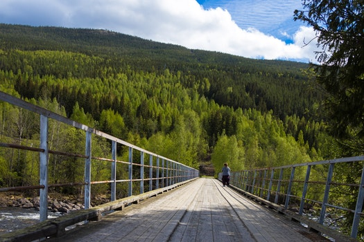 Free stock photo of sky, clouds, forest, bridge