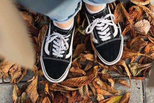 Безкоштовне стокове фото на тему «vans, взуття, ноги»
