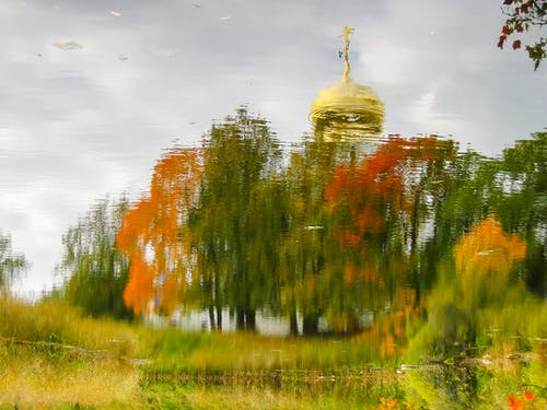 Free stock photo of church, fall  leaves, mirror, plant