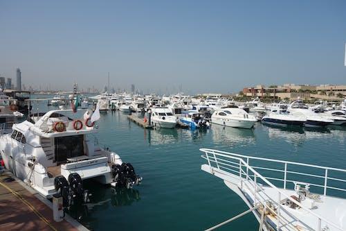 マリーナ, ヨット, 海, 海の眺めの無料の写真素材