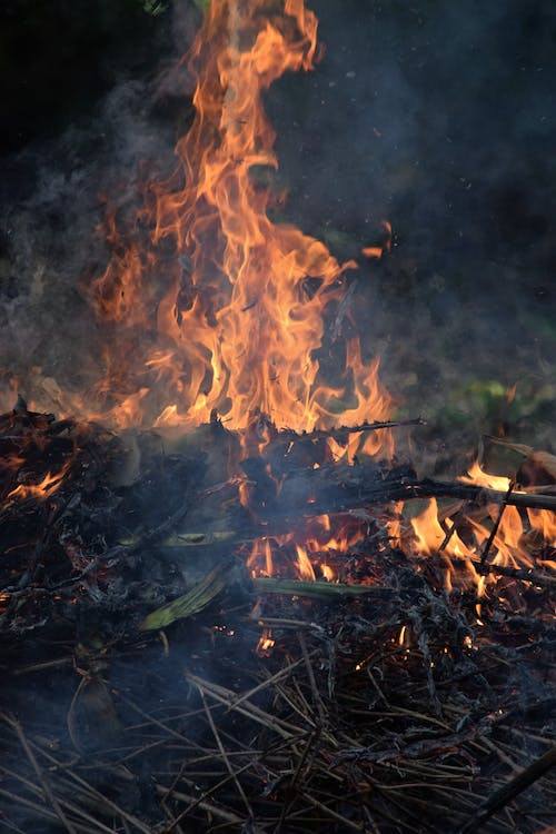 Free stock photo of burned, chama, fire, fire pit