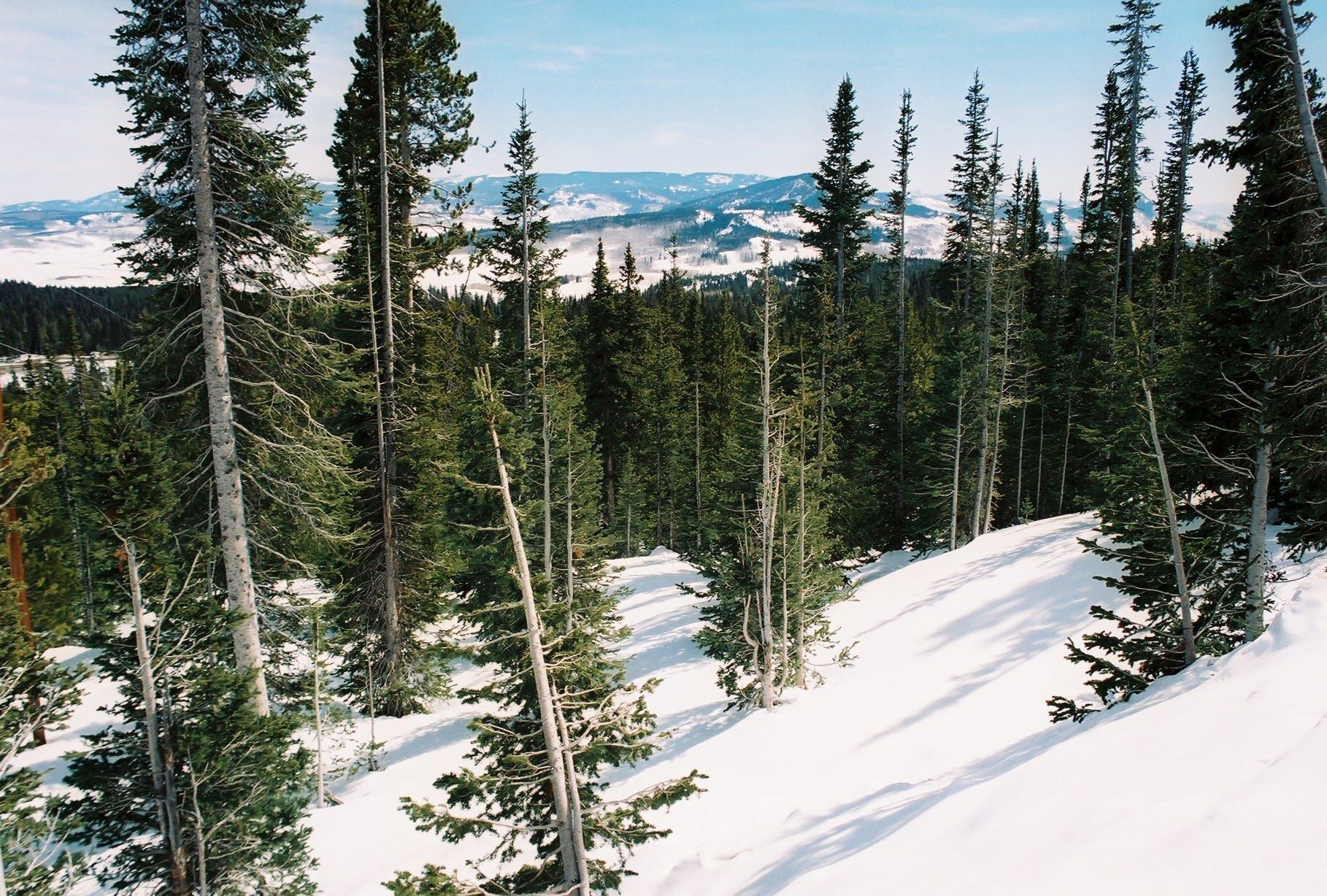 Free stock photo of snow capped mountain