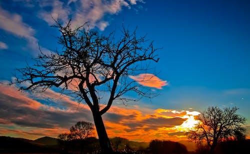 Gratis lagerfoto af himmel, landskab, natur, silhouet
