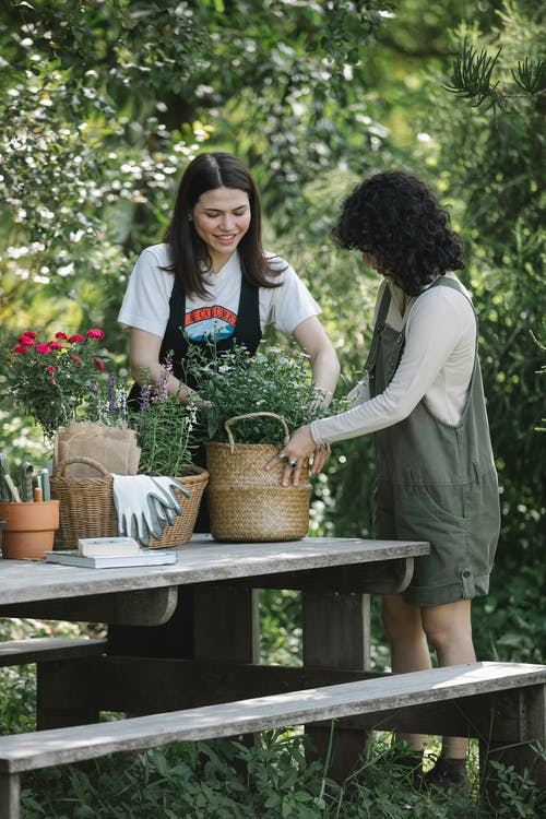 Smiling young ladies in overalls standing near bench with wicker baskets with flowers near gloves and pot with books near trees and green grass in summer day in garden